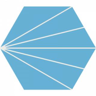Gạch bông lục giác LG402.2